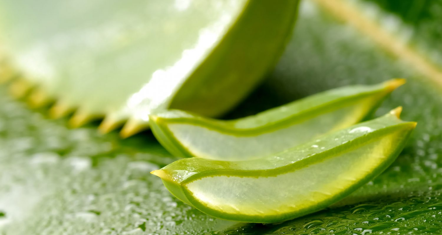 Enjoyeuse ★ Atelier DIY Beauté Serum Aloe vera